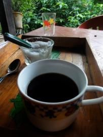 Reflecting on how lucky I am over a fresh cup of organic coffee.