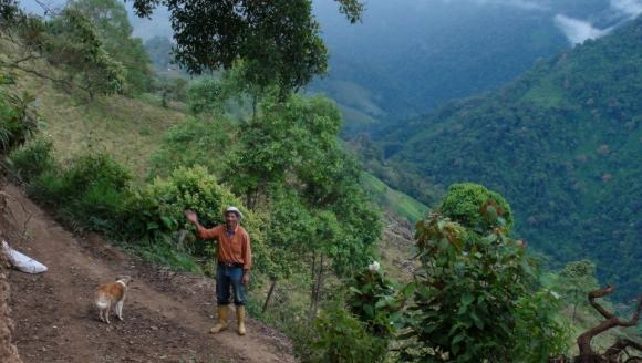 Farmland in the Andes in Venezuela