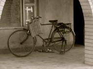 bw bike