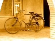 yello bike