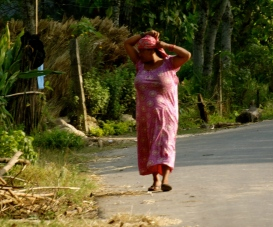 Edge of the road in Chitwan, Nepal