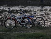 Water's edge Chitwan Nepal