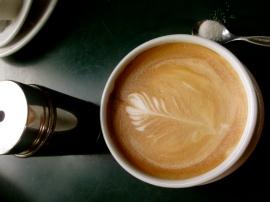 venezuela coffee