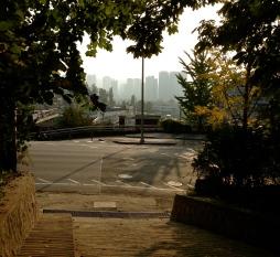 View of city through fall trees Korea